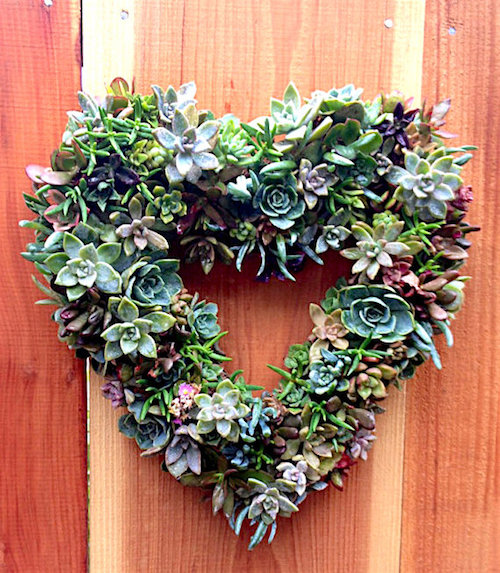 How to Make a Beautiful Succulents Wreath