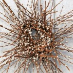 Outdoor Wreaths: How to Make a Pussy Willow Wreath